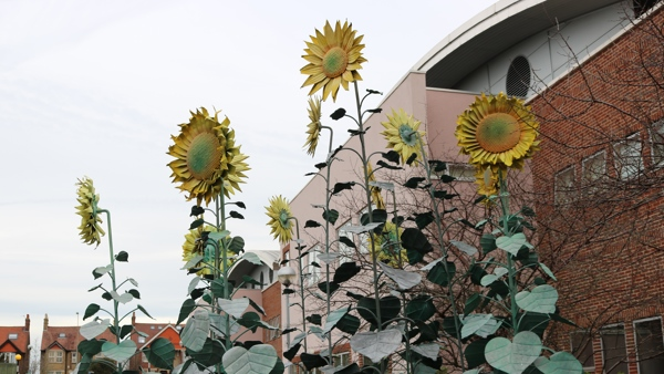 Sculpture of giant sunflowers in front of modern hospital building